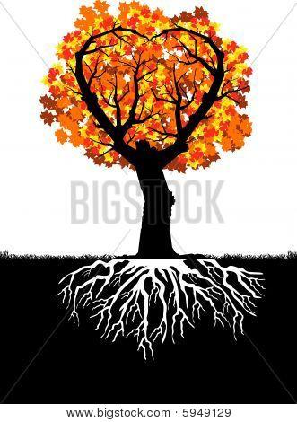 Heart tree - autumn leaves