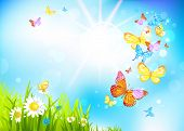stock photo of sunrise  - Vector summer background with flowers and butterflies - JPG