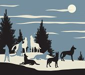 image of wolf moon  - Editable vector illustration of a wolf pack howling at the moon - JPG