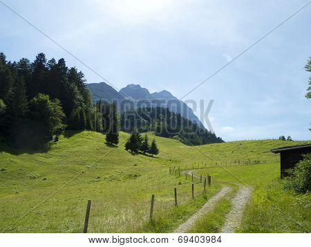 track through the alpine pasture