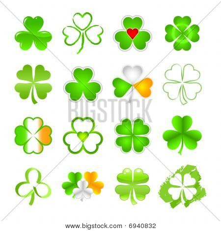 Selection of shamrock