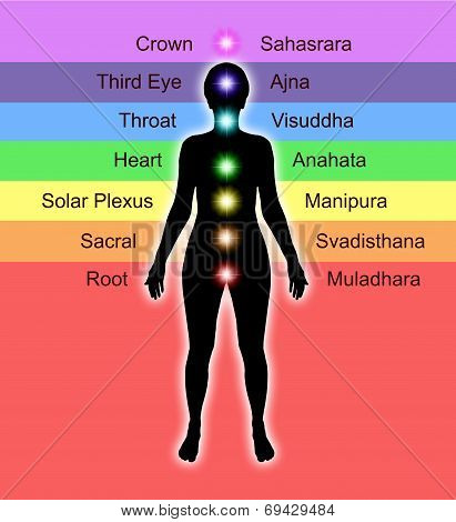 Diagram of the Seven Chakras