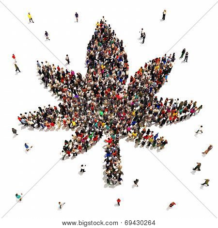 A Large group of people that support marijuana for medical or recreational uses.