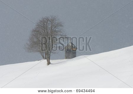 Winter landscape with a chapel near the tree. Snowfall in mountain village. Mountains Carpathians, Ukraine, Europe