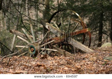 Dilapidated Country Cart