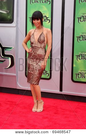 LOS ANGELES - AUG 3:  Minae Noji at the Teenage Mutant Ninja Turtles Premiere at the Village Theater on August 3, 2014 in Westwood, CA
