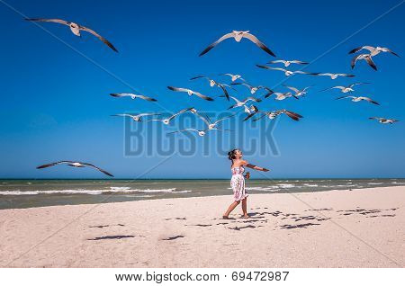 Woman Feeding Seagulls On A Beach