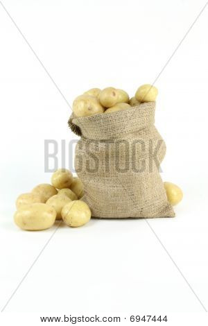 White Fresh Mini Potatoes - Vertical Orientation.