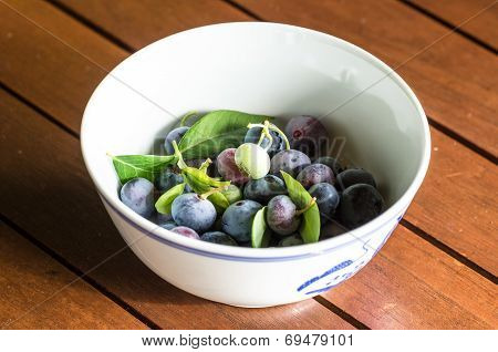 Blueberries In Bowl On Wooden Table