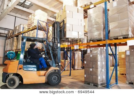 Warehouse Forklift Loader Worker