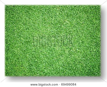 Green Lawn Isolated On White Background.