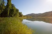 stock photo of marshes  - Marsh spectacular landscapes of dams and forests of La Alcarria Guadalajara Spain