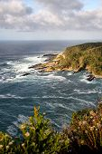 foto of fynbos  - Beautiful view of mountains and sea at Storms River Resort South Africa - JPG