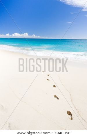 Barbados in Caribbean