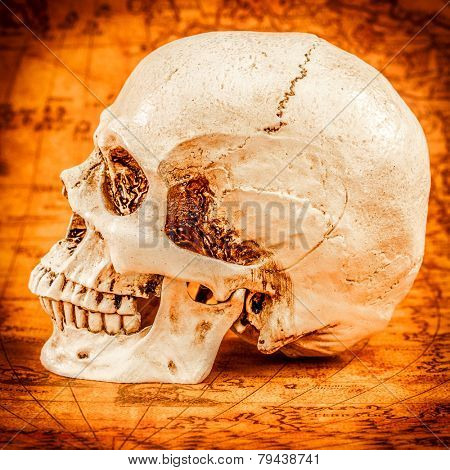 Human skull on old map