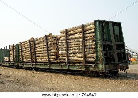 Logs in Transit 1