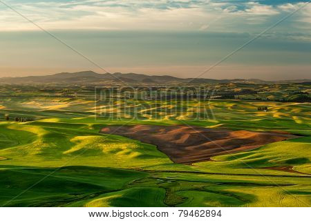 Sunshine Over Crop Fields In Palouse Hills