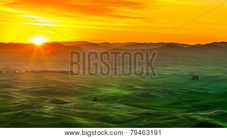Palouse Hills and crop field in sunrise