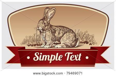 Illustration rabbit in a frame.