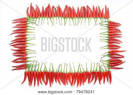 Red hot chili pepper frame
