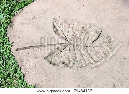 Leaves Imprint
