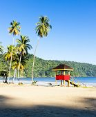 image of greater antilles  - cabin on the beach - JPG