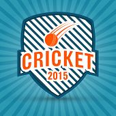pic of cricket  - 2015 cricket retro style badge or label design on blue rays background - JPG