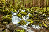 foto of olympic mountains  - cascade waterfall in Olympic national park WA US - JPG