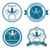 foto of food logo  - Octopus sea food logo - JPG