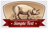 picture of pig head  - Graphical pig in landscape - JPG