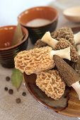 picture of morel mushroom  - Fresh spring morel mushrooms on a plate - JPG