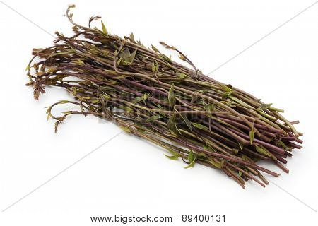 akebia quinata, crude drug, japanese mountain vegetable
