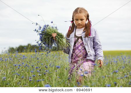 Little Girl Picking Blue Flowers