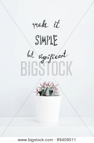 Cactus In A White Pot. Quote Make It Simple But Significant