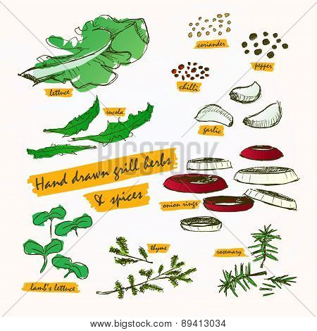 Grill Herbs & Spices Colour Paint