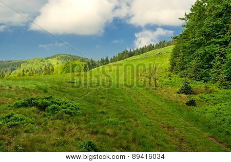 Mountain landscape in spring.