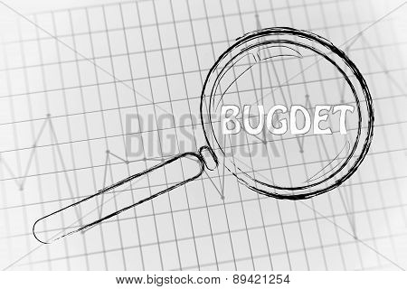 Budget, Magnifying Glass Focusing On Business Performance Graph