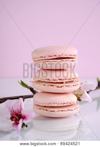 Shabby Chic Vintage Style Pink Macarons