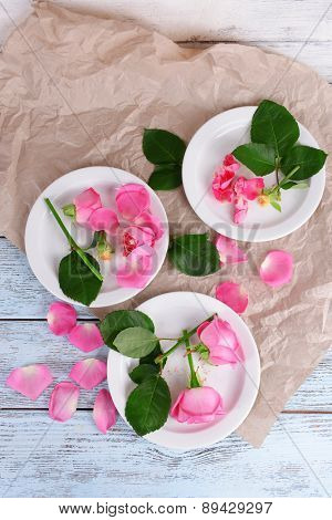 Beautiful pink roses in white plates on wooden table with parchment, top view
