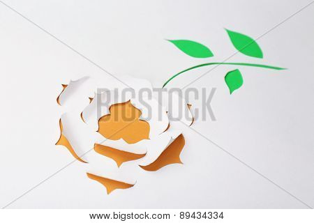 Paper flower as greeting card