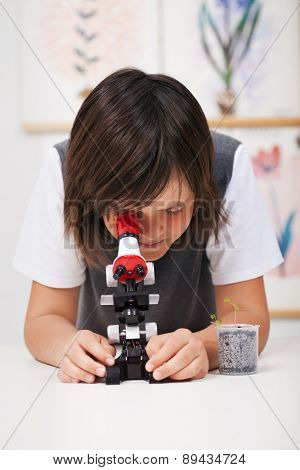 Young school boy in science class with microscope - studying biology