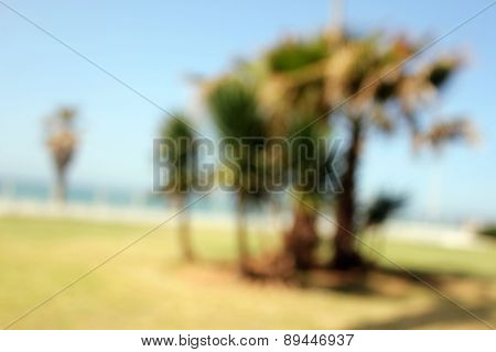 Abstract Blur background landscape