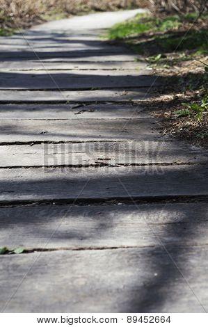 Sun Lit Wooden Walk Path Winding Far Away