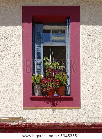 window and flower pots
