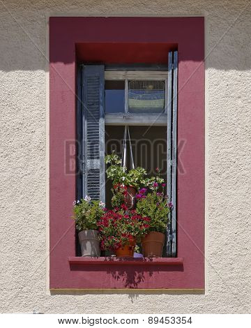 colorful old window and flowers