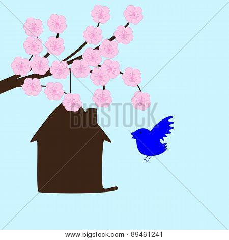 Blossoming Sakura And Bird House