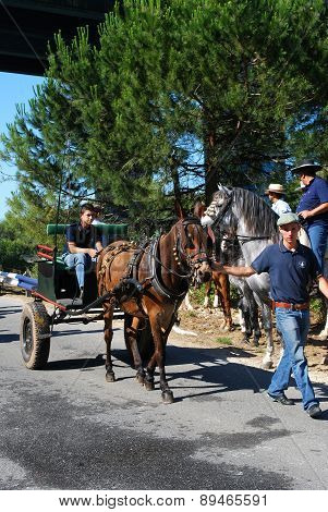 Spanish men with horse and cart, Marbella.