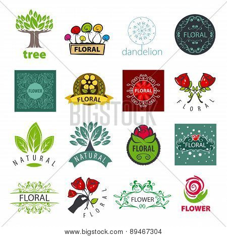 Biggest Collection Of Vector Logo Of Flower And Vegetable