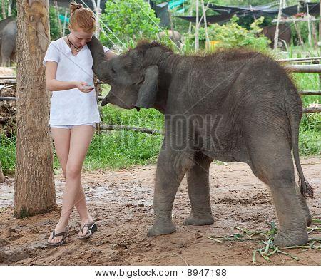 Teenager mit Elefanten-Baby