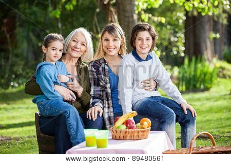 Portrait of happy multi generation family enjoying picnic at park